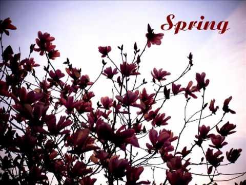 """春よ来い John Forty – """"Spring"""""""