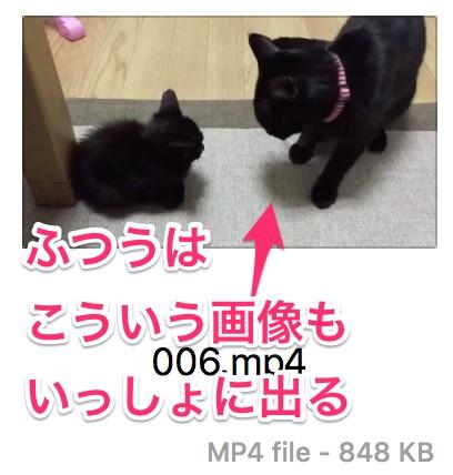 通常のmp4ファイルはサムネイル画像も出る